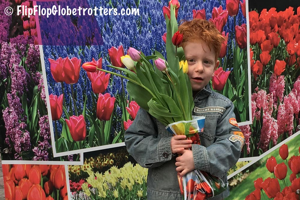 FlipFlopGlobetrotters.com - Blog: visiting the tulip fields in Holland