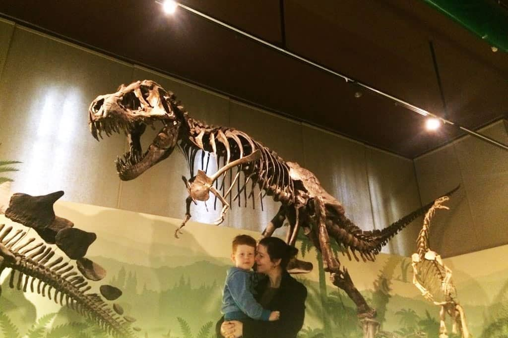 FlipFlopGlobetrotters.com - Blog: 6 top things to do in Milan Italy with kids - Museo di Storia Naturale