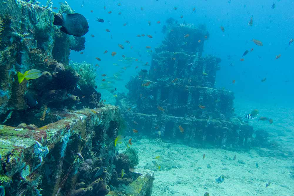 It's easy to see why this dive site is called Pyramids