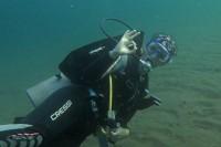 Diving in Dauin