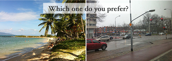 which-one-do-you-prefer