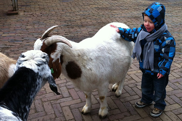 Jace loves petting the goats at the petting farm :-) But some of them are a bit big...