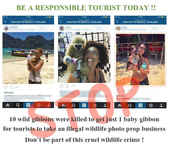 FlipFlopGlobetrotters.com - Tripadvisor stops selling tickets for animal shows