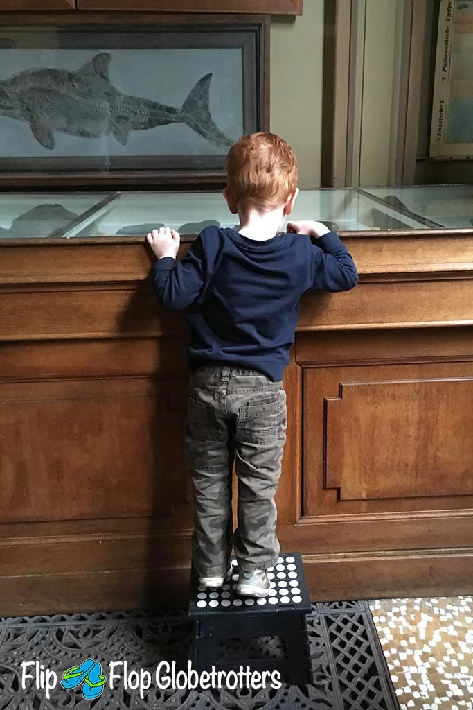 FlipFlopGlobetrotters.com - Blog: Teylers Museum Haarlem with a toddler
