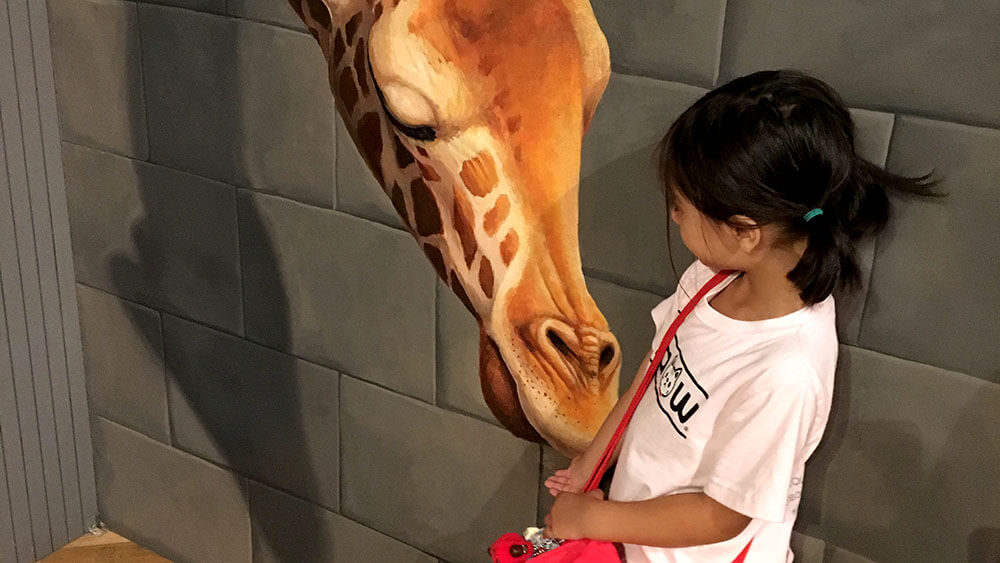 FlipFlopGlobetrotters.com - favorite kids museums worldwide - Odaiba Trick Art Museum Tokyo Japan