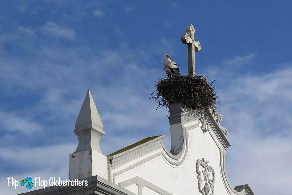 Olhao Our Lady of the Rosary Church with stork