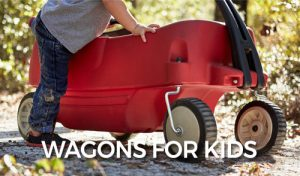 FlipFlopGlobetrotters.com - Detailed product guide for the best wagons for kids