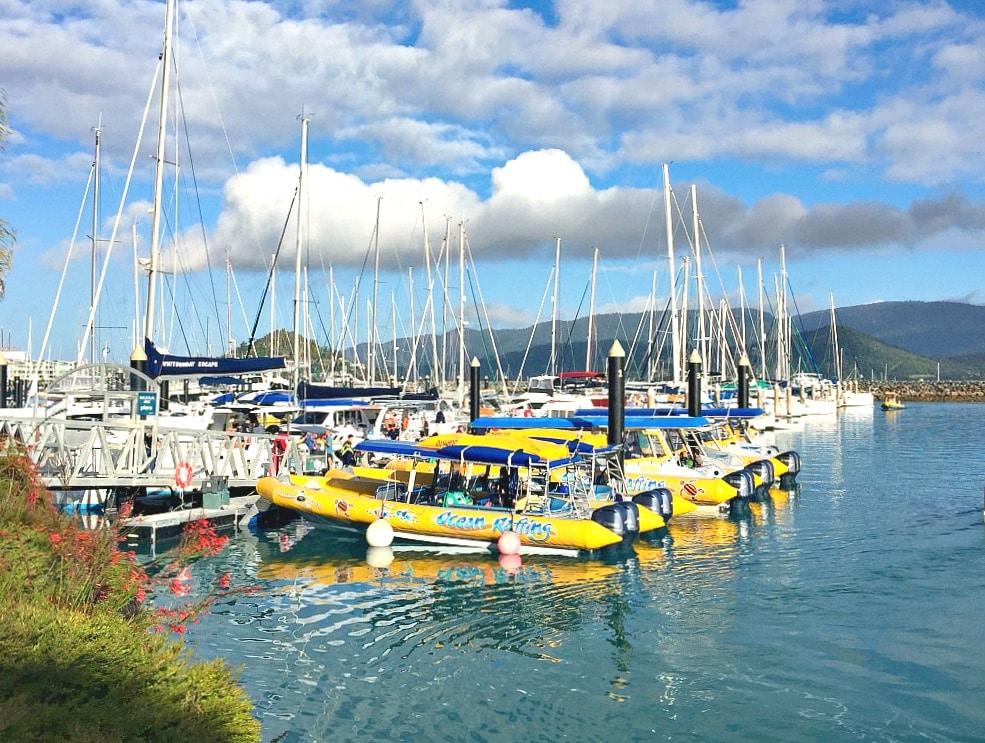 Budget Travel Talk - Abell Point Marine Airlie Beach