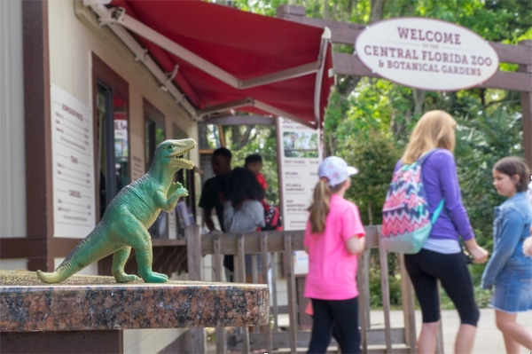 FlipFlopGlobetrotters.com - Best daytrips from Orlando - central florida zoo