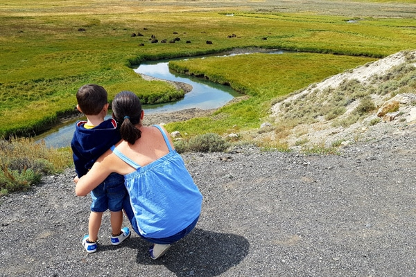 Yellowstone NP with kids
